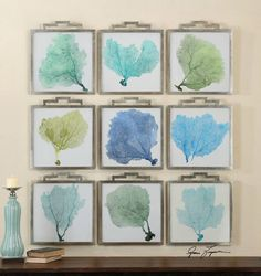 This beautiful grouping of sea fans will create a unique statement for a beach house   caronsbeachhouse.com