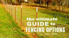 With all the choices, it can be hard to decide which of the fence options best fit your needs. Get to 411 on all your options and make an informed decision.