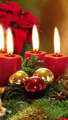 Noel Christmas, Merry Little Christmas, Christmas Candles, Green Christmas, Christmas Colors, All Things Christmas, Winter Christmas, Christmas Decorations, Christmas Ornaments