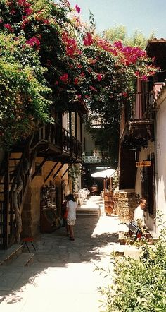 Old Nicosia, Cyprus (by Steenjep on Flickr)