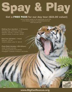 Big Cat Rescue provides incentives for spaying and neutering your pets :)