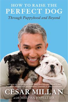 "How to Raise the Perfect Dog (Paperback) For the millions of people every year who consider bringing a puppy into their lives, Cesar Millan says, ""Yes, you can raise the perfect dog!"""