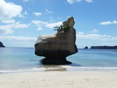Sphinx Rock, Cathedral Cove, Nieuw-Zeeland  #newzealand #roadtrip