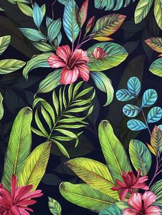 This Tropical Paradise Wallpaper will add a colourful exotic touch to your home with it's bold design. It features tropical foliage, leaves and flowers in vibrant shades of green, teal and pink, set on a contrasting black background. Easy to apply, this high quality wallpaper has a lightly textured matte finish and would look great as a feature wall or equally good when used to decorate a whole room. Paradise Wallpaper, Palm Wallpaper, Feature Wallpaper, Tropical Wallpaper, Flower Wallpaper, Stunning Wallpapers, Tropical Paradise, Tropical Leaves, Navy Blue Background
