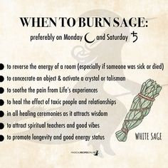 modern witch Sage information and facts. Saved for future reference. Relevant for new practitioners.