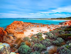 Beer Barrel Beach, St Helens, Bay of Fires, Tasmania - Beach - Photographs - Australia Stock Photos - High quality licensed stock images Beautiful Places To Visit, Beautiful Beaches, Beautiful World, Places To See, Amazing Places, Australia Travel, Amazing Nature, East Coast, Beautiful Landscapes
