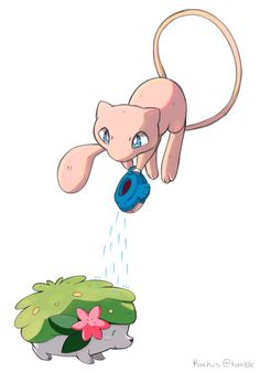 Mew watering Shaymin                                                                                                                                                                                 More