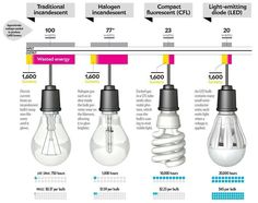 Energy efficient light bulbs can save much more electricity than the typical halogen light bulbs, especially if you use CFL's