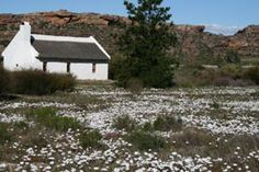 Self Catering in Clanwilliam / Alpha Excelsior Guest farm is situated in the heart of the Cederberg Mountains, in a secluded area of natural beauty . My Land, South Africa, Cape, Farmhouse, Traditional, House Styles, Places, Outdoor, Mantle