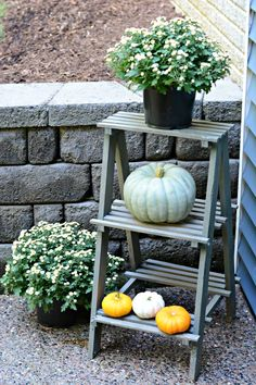 Use a small ladder as a flower stand.  Great for Fall mums!