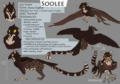 gryphon character I've made for Aery Name: Twistoult Character Name: Soolee Character Species Combination: Bat-hawk (Macheiramphus alcinus) / Clouded Le. Creature Concept Art, Creature Design, Fantasy Beasts, Fantasy Art, Magical Creatures, Fantasy Creatures, Creature Drawings, Cute Dragons, Mythological Creatures