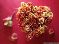 Best Valentine Valentine's Day Quotes Funny. Valentines Day Roses Wallpapers  Crazy Frankenstein