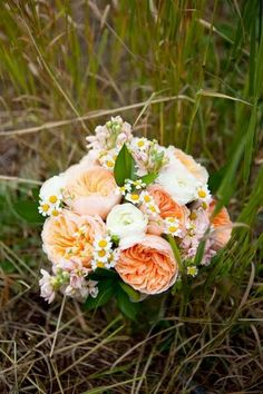 Peach roses, ranunculus and chamomile. (Would be perfect with some wheat!)