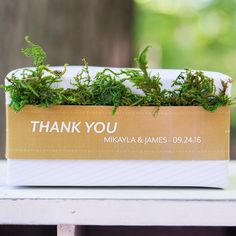 Roll of Faux Moss Ribbon  - Shop on WeddingWire! Wedding Welcome Bags, Wedding Favors, Wedding Day, Paper Decorations, Reception Decorations, Coral Wedding Themes, Mason Jar Favors, Enchanted Forest Theme, Tuscan Wedding