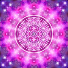 Geometría Sagrada : Geometría Sagrada