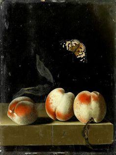 Adriaen Coorte, Drie perzikken op een stenen richel met vlinder, 1693-95, olieverf op papier op paneel, 31.3 x 23.3 cm, privécollectie http://www.artsalonholland.nl/barok-nederland/adriaen-coorte-drie-perzikken-op-een-stenen-richel