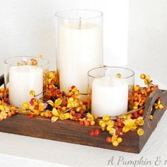 Fall Candle Centerpiece {Candle Holders}