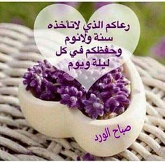 Good Morning Arabic, Good Morning Images Hd, Good Morning Good Night, Morning Pictures, Morning Wish, Gd Morning, What Is Islam, Beautiful Morning Messages, Good Evening Wishes