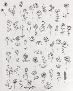 Flower Doodles Discover 30 Ways to Draw Flowers A list of 30 ways to draw flowers - From roses poppies tulips wildflowers and more. Learn how to draw flowers using simple line drawings. Simple Flower Drawing, Simple Line Drawings, Floral Drawing, Flower Art, Simple Flower Tattoo, Simple Line Tattoo, Simple Flower Design, Cactus Flower, Flower Crafts