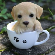 Hi-Line Gift Ltd. Te Hi-Line Gift Ltd. Teacup Labrador Puppy Statue - cooking tips Baby Animals Super Cute, Cute Baby Dogs, Cute Little Puppies, Cute Dogs And Puppies, Cute Little Animals, Cute Funny Animals, Cute Animals Puppies, Super Cute Puppies, Funny Dogs
