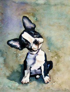Boston Bulldog Pup by Julie Martin Boston Terriers, Boston Terrier Love, Boston Art, French Bulldog Puppies, Frenchie Puppies, French Bulldogs, Dog Portraits, Animal Paintings, Dog Art