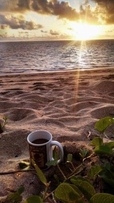 Morning Coffee Photography Beach 27 New Ideas Coffee Gif, I Love Coffee, Coffee Cups, Coffee Barista, Coffee Break, Iced Coffee, Foto Fantasy, Good Morning Coffee, Coffee Pictures