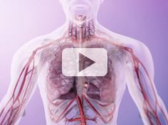 3M – Respiratório