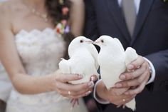 White wedding doves symbolise peace, love and happiness, and are a beautiful addition to your wedding celebrations. Wedding Birds, Wedding Doves, Rose Wedding, Mermaid Wedding, Summer Wedding, Dream Wedding, Paris Wedding, Budget Wedding, Wedding Blog