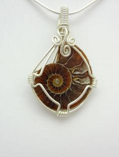 Ammonite Fossil Wire Wrapped Pendant