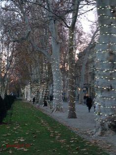 Advent in Zrinjevac Park, Zagreb #advent #zagreb #zrinjevac #park #croatia #holiday