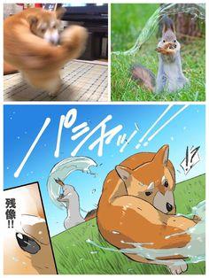 Anime memes funny - Battle doggo The saga continues animememes animememe anime Stupid Funny Memes, Funny Animal Memes, Funny Relatable Memes, Funny Animals, Cute Animals, Anime Meme, Pet Anime, Cute Comics, Funny Comics