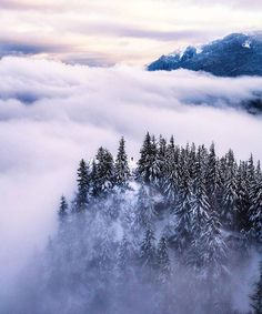 Above the clouds in the Pacific Northwest.
