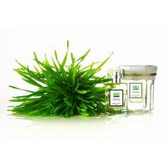HONORÉ DES PRÉS Nu Green Eau de Toilette (£48) ❤ liked on Polyvore featuring flowers, fillers, backgrounds, green and plants