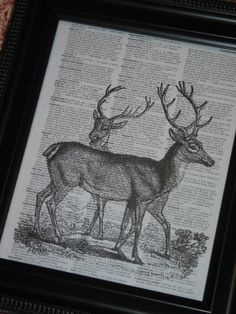 Deer Art Print Dictionary Print Dictionary by HamiltonHousePrints