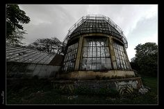 abandoned architectural greenhouse