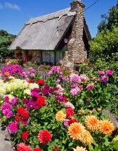 Carmel's Fairy Tale Cottages : Mike Barton Photography