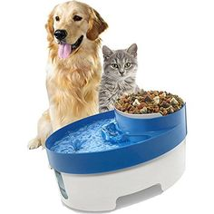 Archi Automatic 3 in 1 Pet Water Fountain with Water Bowl Food Bowl for Dog Cats with Water Filter 110V  Blue *** Check out the image by visiting the link. (This is an affiliate link) #automaticdogfeeder