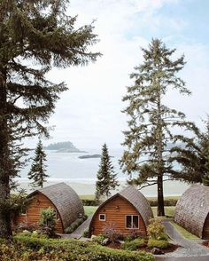 4 days full of adventure on Vancouver Island — Chlobe Trotter Oh The Places You'll Go, Places To Travel, Travel Destinations, Places To Visit, Vancouver Island, British Columbia, Columbia Travel, Dream Vacations, Vacation Spots