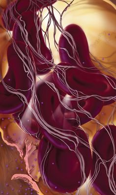 These gorgeous medical illustrations look like scenes from another world Science Art, Science And Nature, Medical Science, Ayurvedic Body Type, Logic Problems, Robotic Surgery, Medical Pictures, Medical Anatomy, Figure Drawing Reference