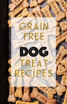 Grain Free Dog Treat Recipes: 5 Easy Homemade Recipes The Effective Pictures We Offer You Easy Homemade Recipes, Homemade Dog Treats, Healthy Dog Treats, Doggie Treats, Dog Biscuit Recipes, Dog Treat Recipes, Dog Food Recipes, Dog Biscuit Recipe Grain Free, Free Recipes