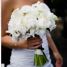 Holly carried mums, peonies, mini calla lilies, gerbera daisies and tulips. Black ribbon brought in the other color of the palette. Daisy Bouquet Wedding, Gerbera Daisy Bouquet, Summer Wedding Bouquets, Bride Bouquets, Floral Wedding, Wedding Flowers, Gerbera Daisies, Bridesmaid Bouquets, Tulips