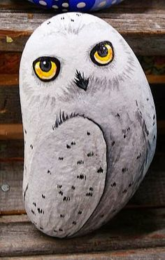 Snowy owl painted on a rock. I think we can do this middle school!