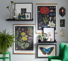 This spring, Pottery Barn is also jumping on the botanical trend, featuring a collection of colorful prints with an interesting archival look.