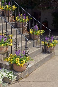 Epic gallery showcasing 64 outdoor steps with flower planters and pots to give you many ideas for dressing up your outdoor stairs. Front Yard Planters, Outdoor Planters, Flower Planters, Front Yard Landscaping, Flower Pots, Flower Containers, Flower Ideas, Landscaping Ideas, Garden Steps