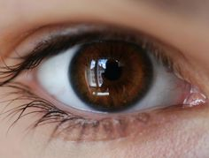 What your eye color says about your personality Pretty Brown Eyes, Beautiful Brown Eyes, Dark Brown Eyes, Golden Brown, Disney Instagram, Instagram Girls, Brown Eyes Aesthetic, Heterochromia Eyes, Eye Photography