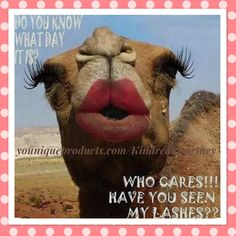 Happy Hump Day Y'all!!! 😊🙌🏻🐪  Look of the Day 😍❤️  Face: Touch Glorious Face Primer, Younique Sculpting Trio in Medium along with some beachfront bronzer in Hermosa, & to finish my look I used Touch Behold Translucent Setting Powder   Lips: Moodstruck Stiff Upper Lip Stain in color Sleek  Eyes: Younique 3D Fiber Lashes & Moodstruck Minerals Pigment in Corrupted for that extra smoky look  Have a nice day everyone!!!  youniqueproducts.com/KindredCourtney