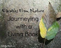 """For me, reading a """"living book' such as Parables from Nature can be like hiking up a rugged mountain. Confusion of direction sets in, yet I move forward. Public Domain Books, Year 2, Journey, Age, Learning, Nature, Naturaleza, Studying, The Journey"""