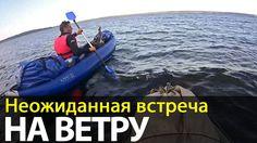 Неожиданная встреча на ветру   Беломорские приключения 2016   Приключени...