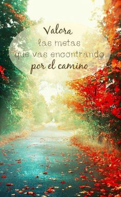 Sayings in Spanish. Learn about popular sayings and proverbs in Spanish Cute Quotes, Great Quotes, Inspirational Quotes, Foto Transfer, Quotes En Espanol, Popular Quotes, Spanish Quotes, English Quotes, More Than Words