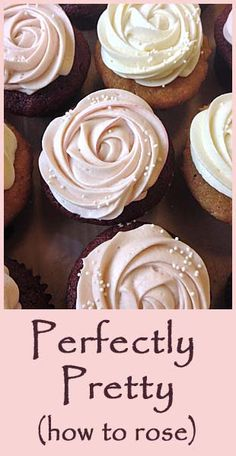 Perfectly Pretty- how to rose- even tho I will never make cupcakes with such beautiful icing Frosting Recipes, Cupcake Recipes, Dessert Recipes, Just Desserts, Delicious Desserts, Yummy Food, Baking Desserts, Cake Decorating Tips, Cookie Decorating
